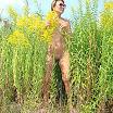 Голая жена в поле